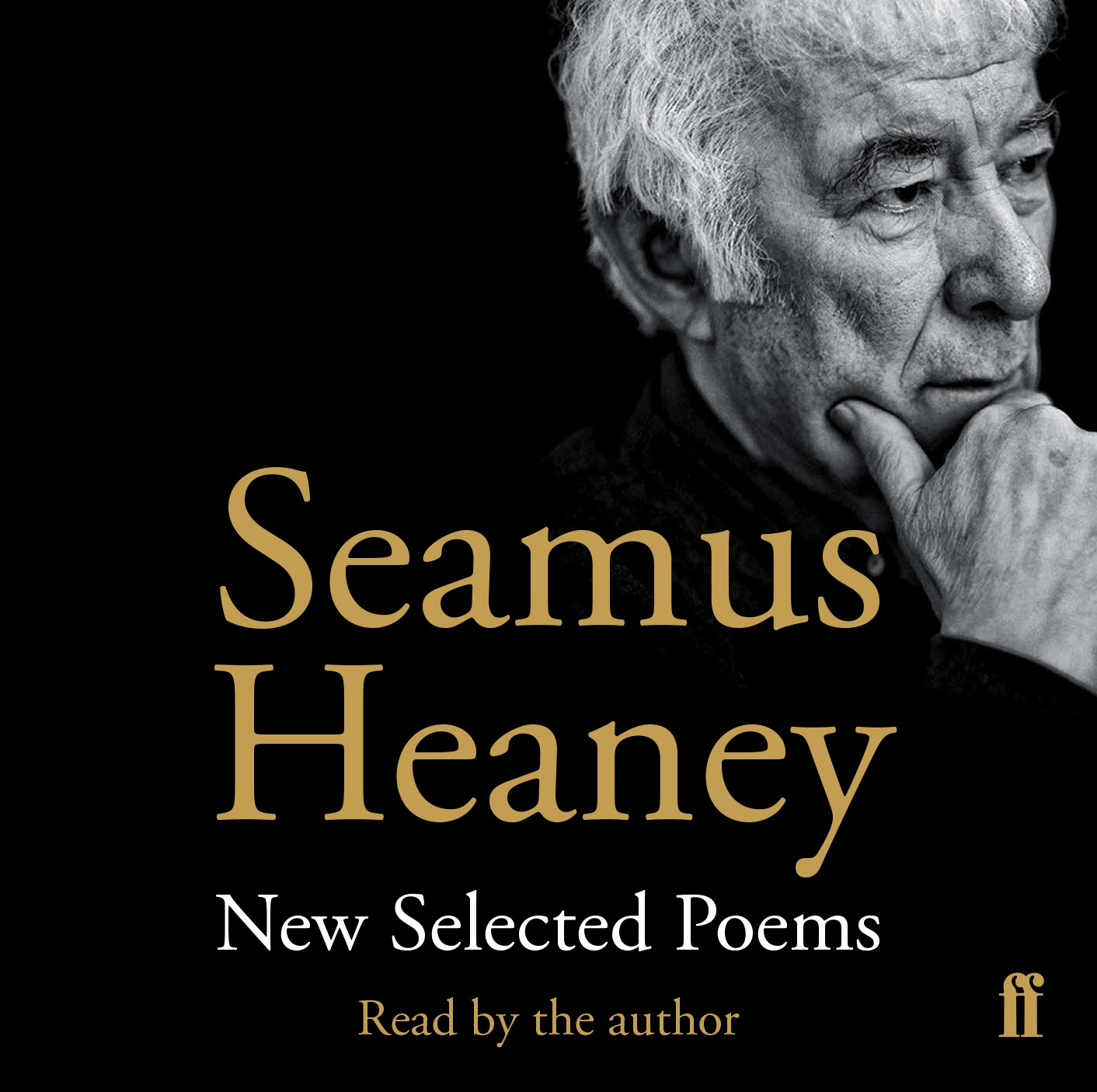 essay on seamus heaney A four-year-old boy stands on the sidewalk with his brothers, unaware of the danger that lies just a few feet away in the street he sees his other brothers across.