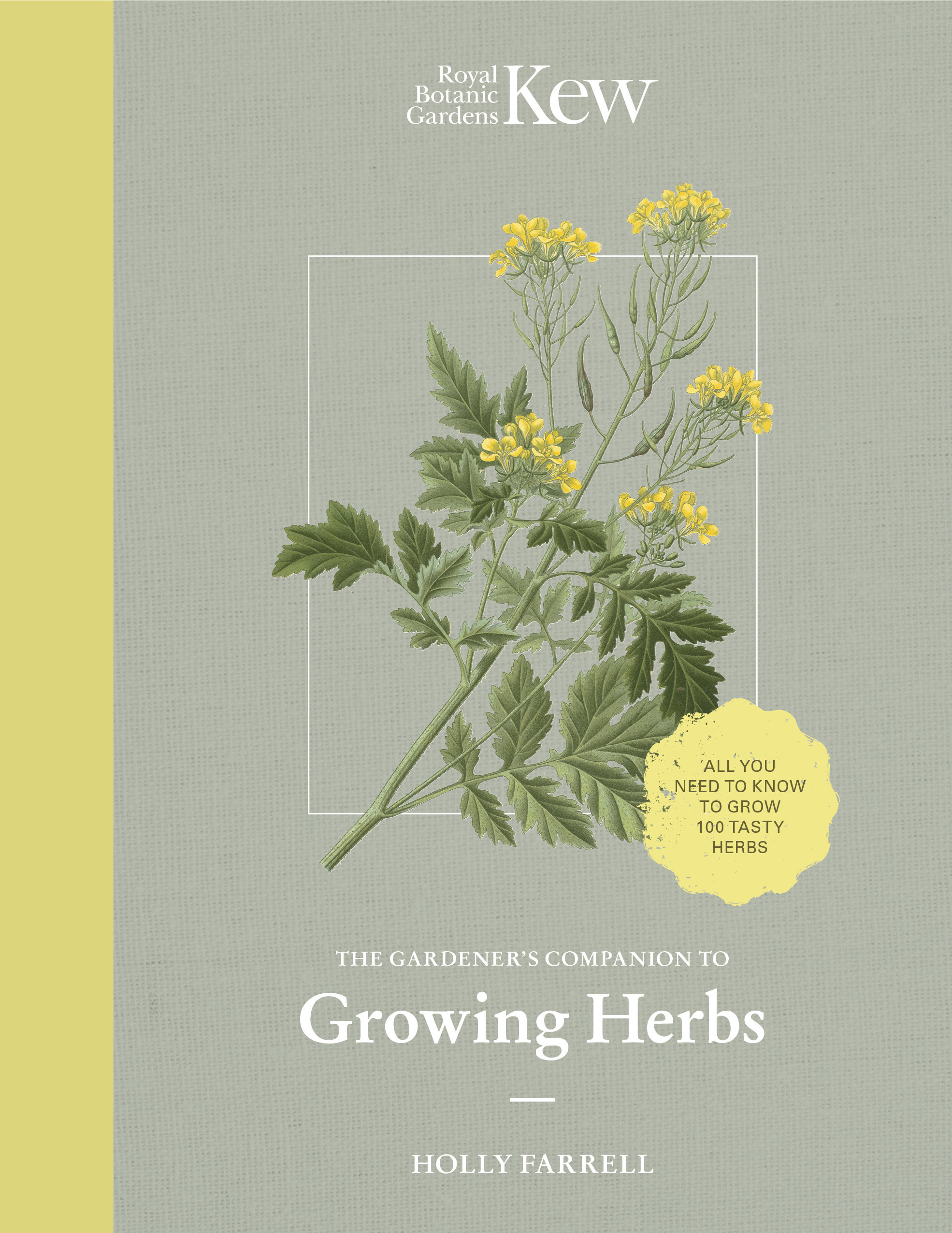 Download names herbs ebook botanical with