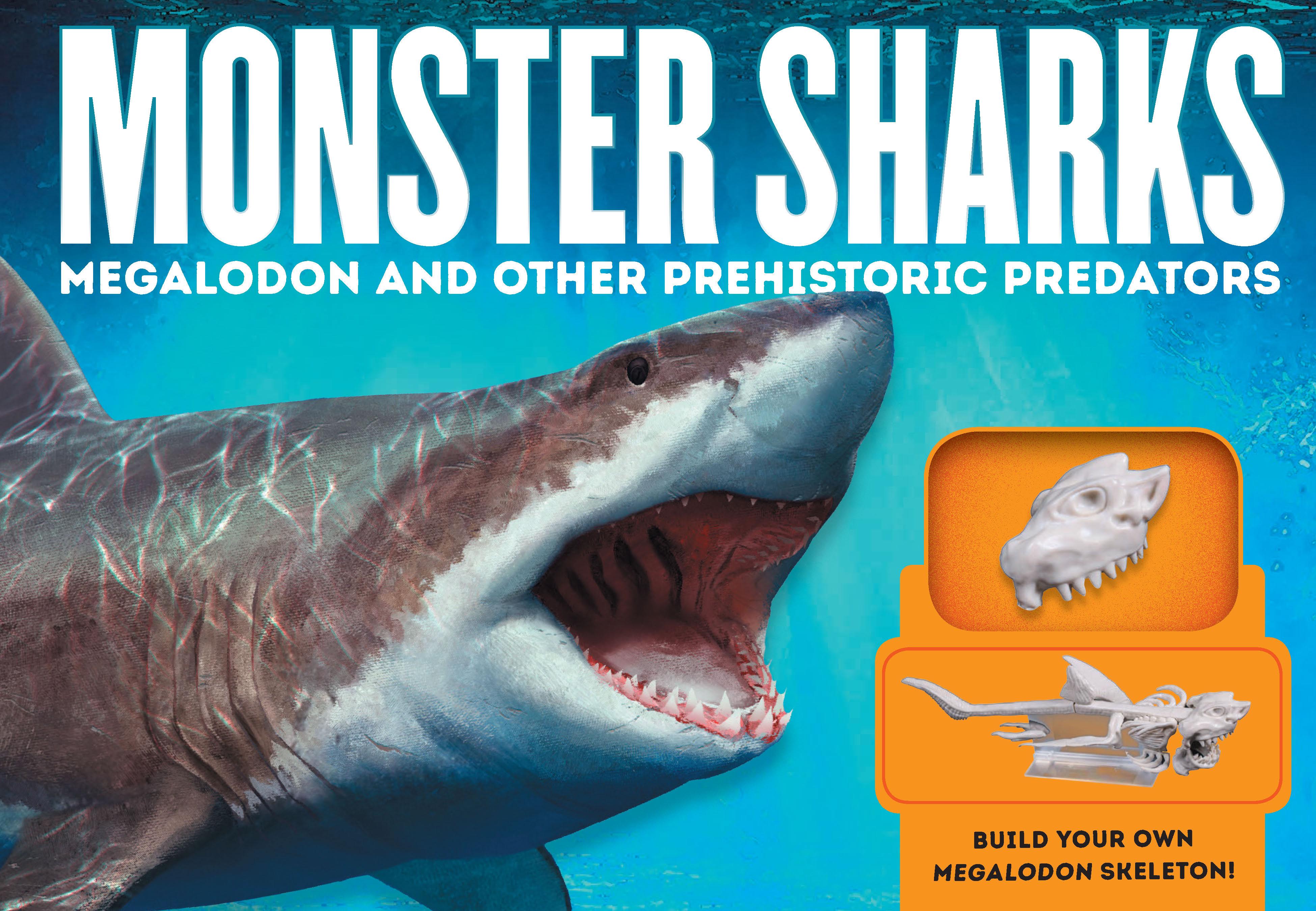 Monster Sharks - Brenda Gurr and illustrated by R J  Palmer