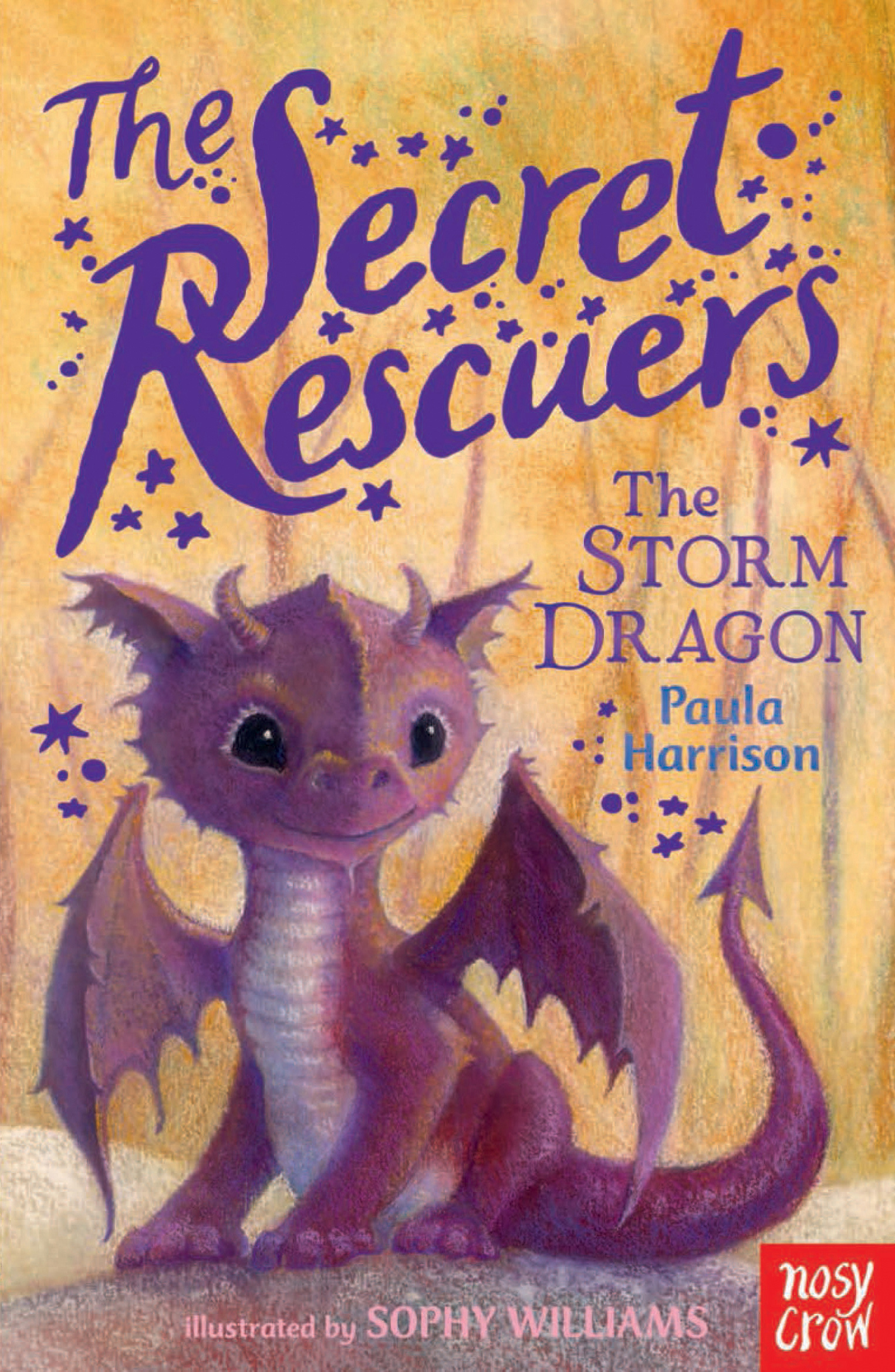 Image result for secret rescuers storm dragon cover