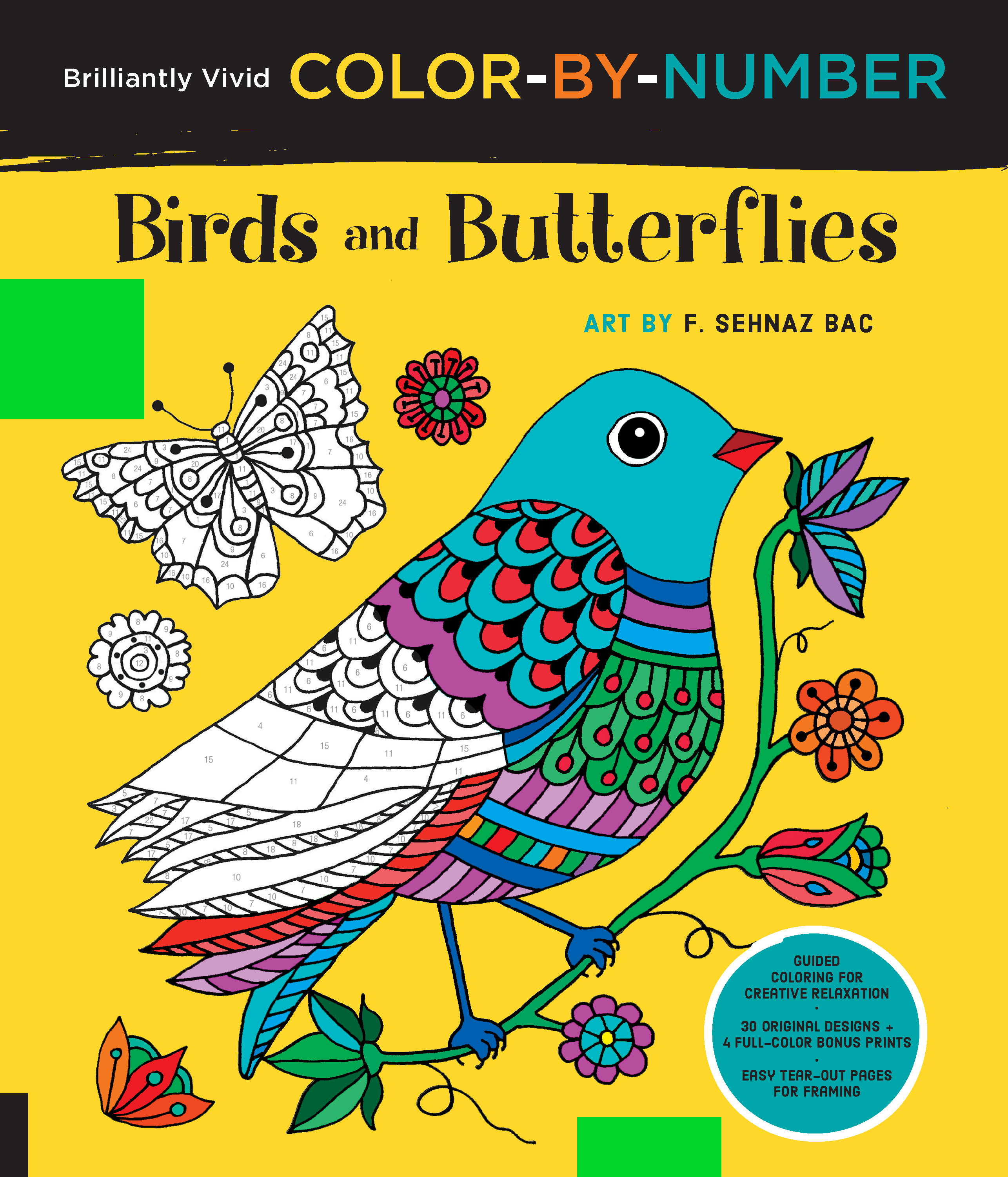 brilliantly vivid color by number birds and butterflies f
