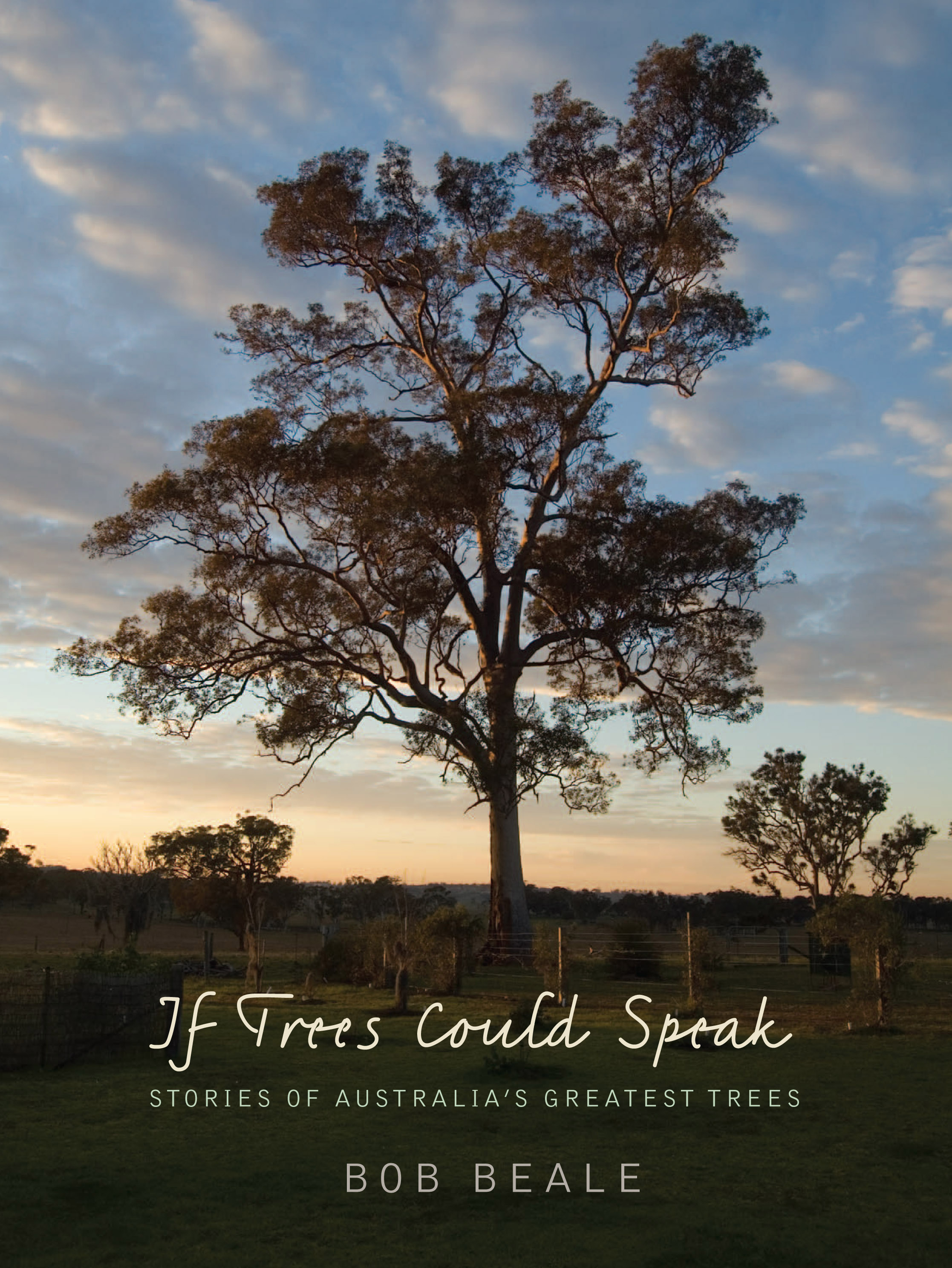 """essay on if trees can speak It is not necessary to focus only on global issues like world hunger, poverty, or aids it is your """"if i can change the world"""" essay, and you may talk about anything that you think needs change, from noisy neighbors and nasty siblings to hamburgers growing on trees."""