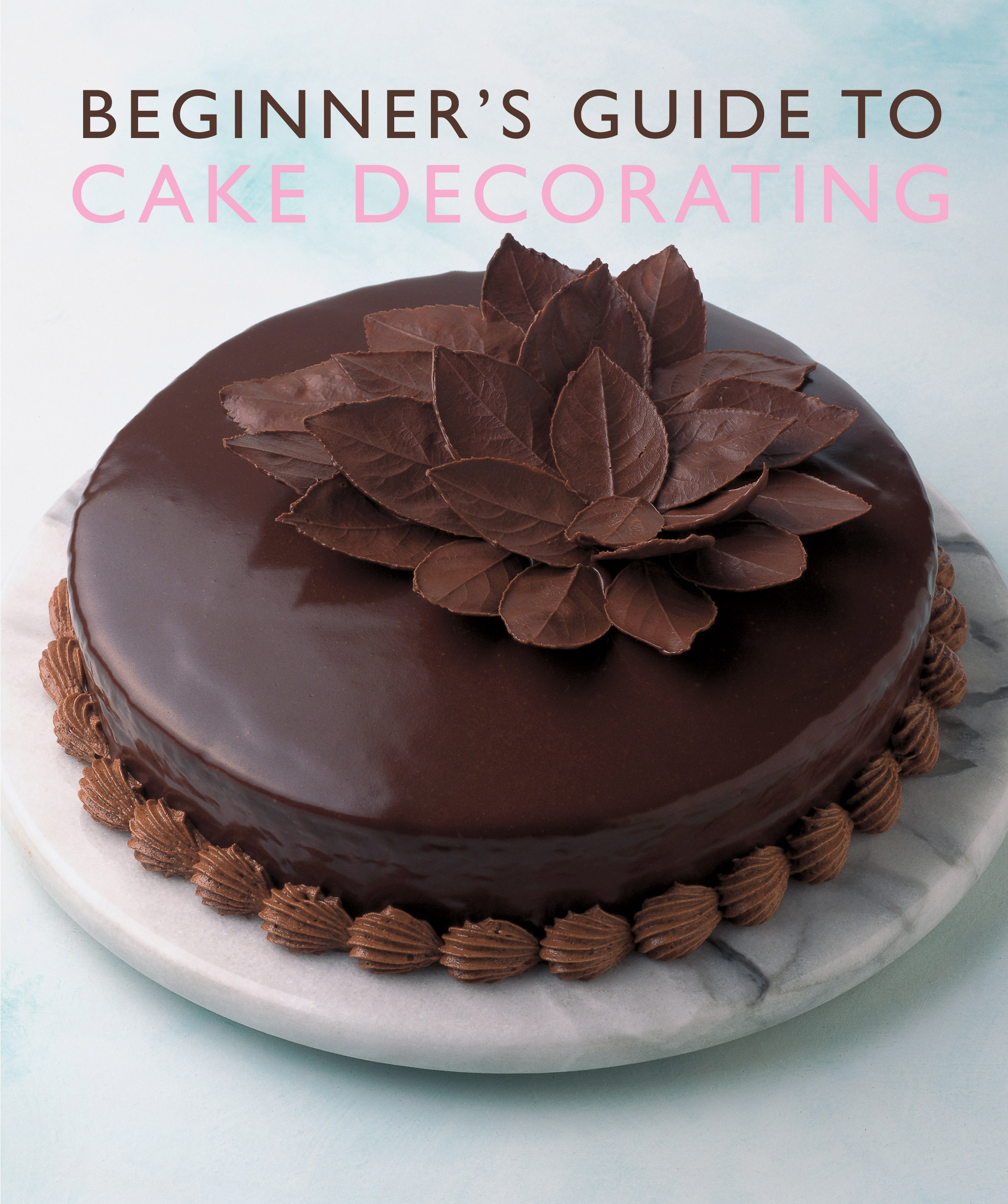 Beginner S Guide To Cake Decorating Murdoch Books Test Kitchen