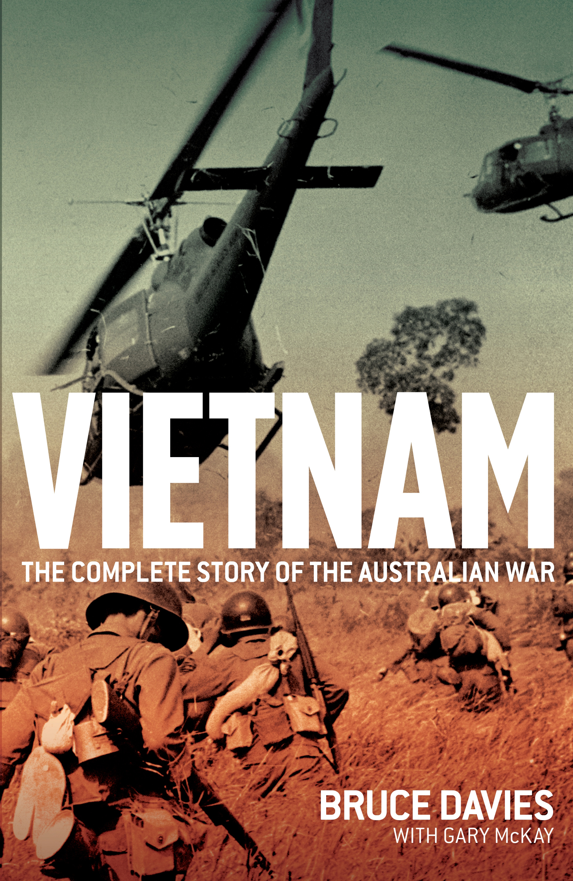 essays in the vietnam war
