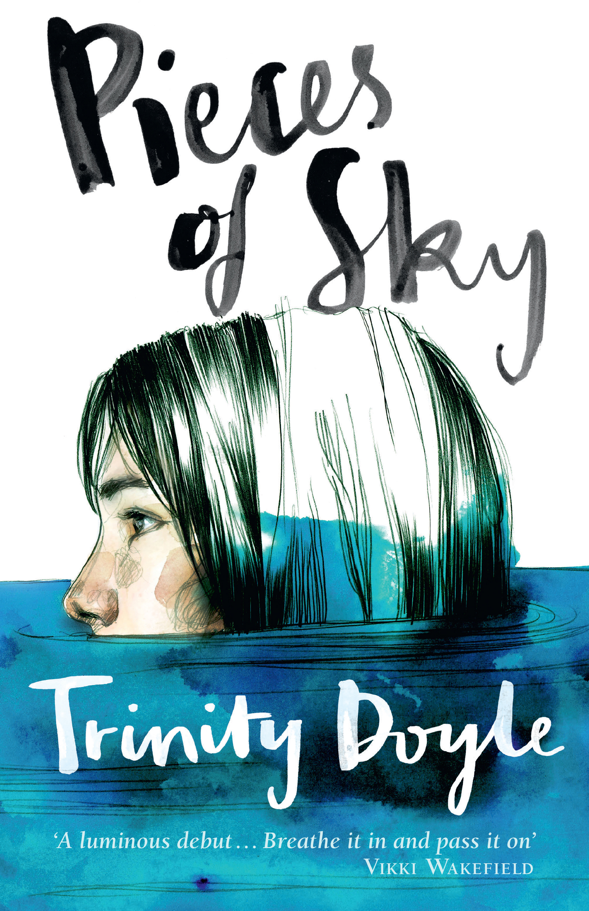 Book Cover With Illustration : Pieces of sky trinity doyle  allen