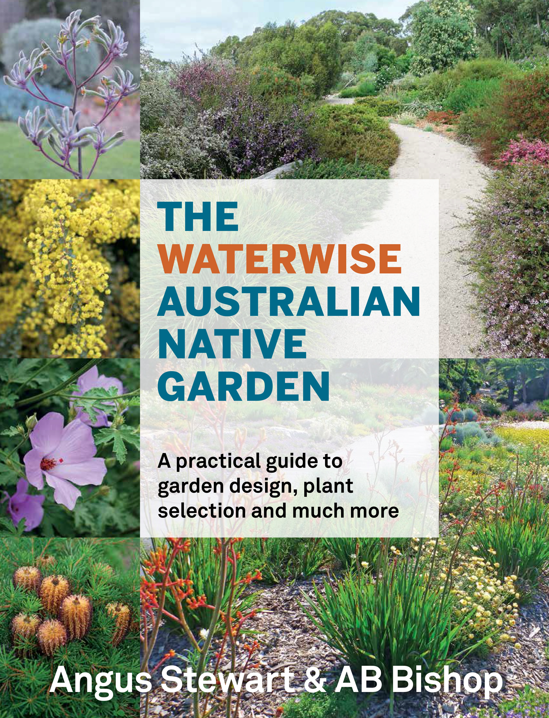 The Waterwise Australian Native Garden Angus Stewart And Ab