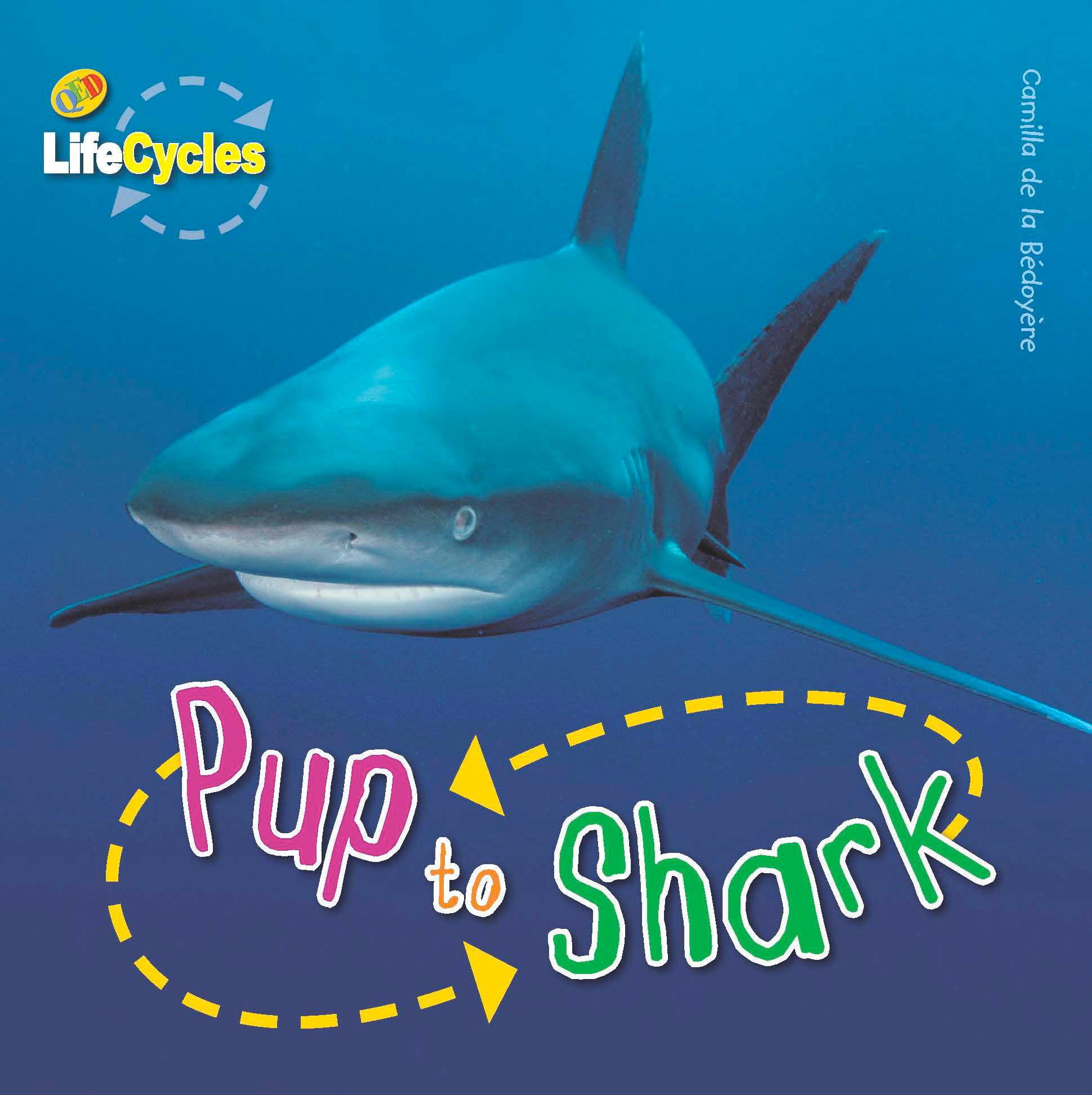 Lifecycles  Pup To Shark - Camilla De La Bedoyere - 9781848352261