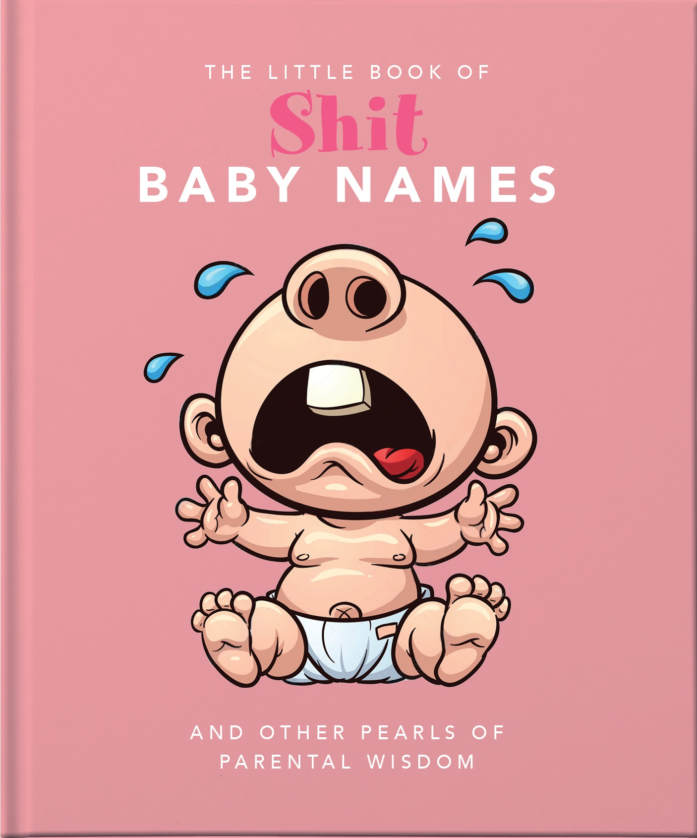 The Little Book of Shit Baby Names - Orange Hippo ...